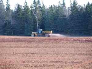 Fall Application of CalMag on old potato land